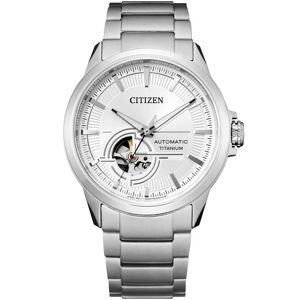 Citizen Titanium NH9120-88A